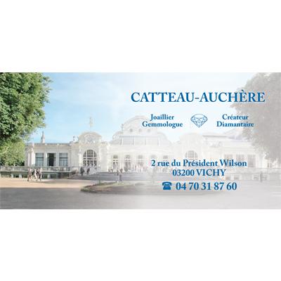 catteau auchère cv